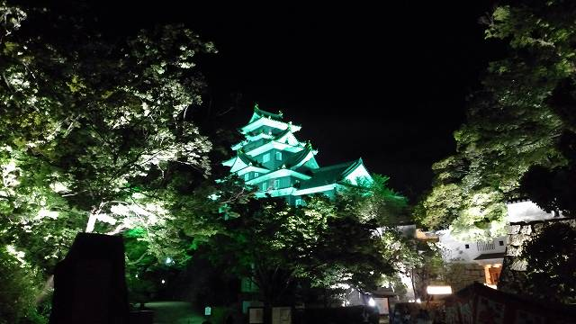 岡山城(夜) (1)