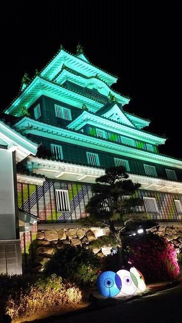岡山城(夜) (2)