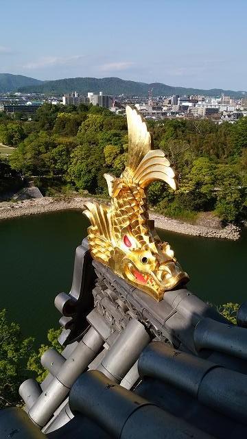 岡山城(昼) (4)